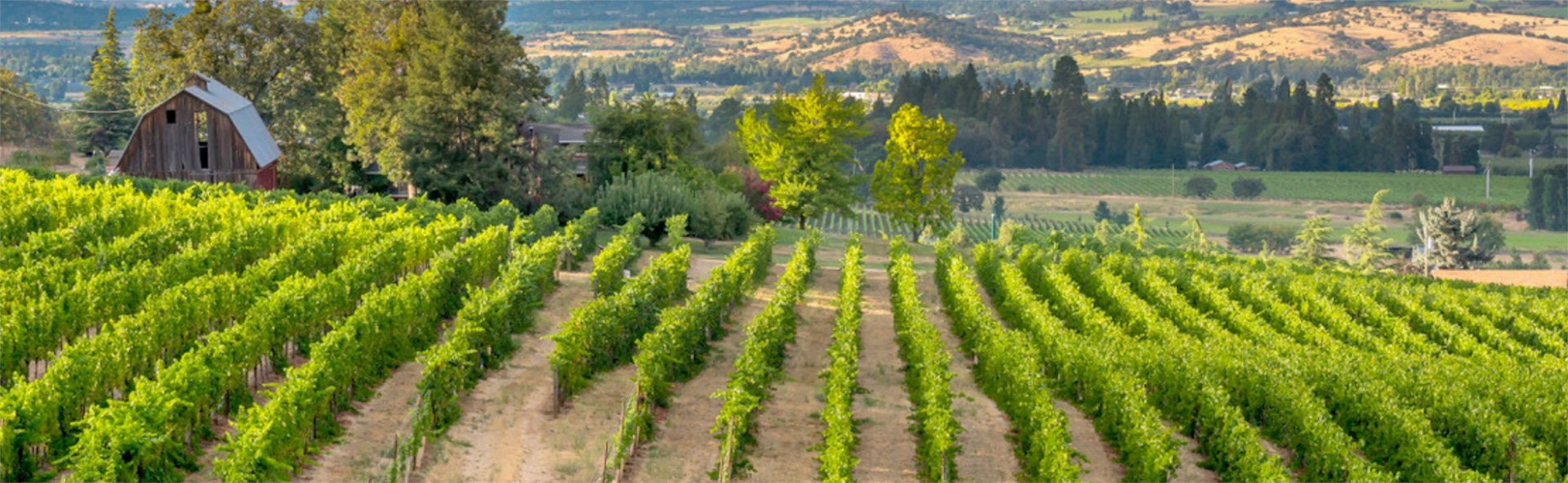 Rogue Valley from Medford, the heart of the Rogue