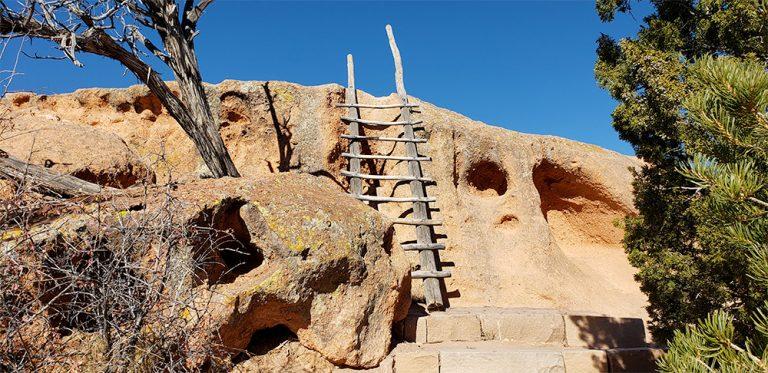 Log Ladders