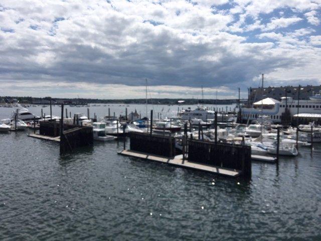 Along the coast of Casco Bay in Portland Maine Image by Mira Temkin