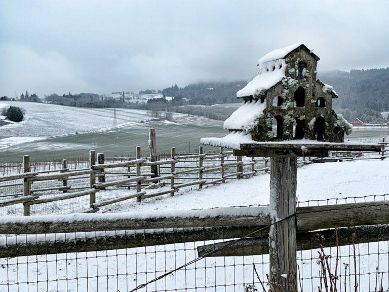 Abbey Road Farm Birdhouse in Snow Image by Christine Cutler