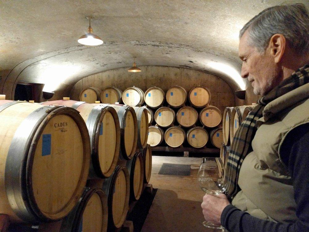 Alloro Vineyard Image by David Nershi