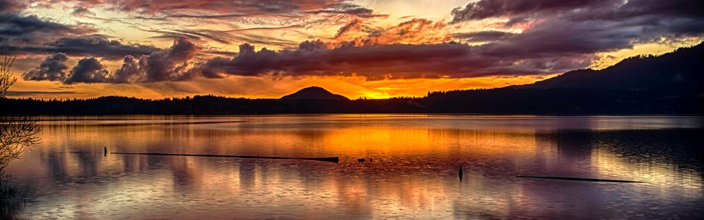 Lake Quinault in Olympia